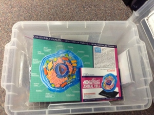 Animal Cell Kit