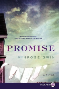 Cover of Promise by Minrose Gwin